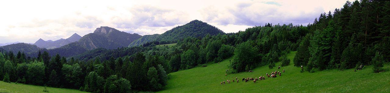 Panorama Pienin z przełęczy Limierz