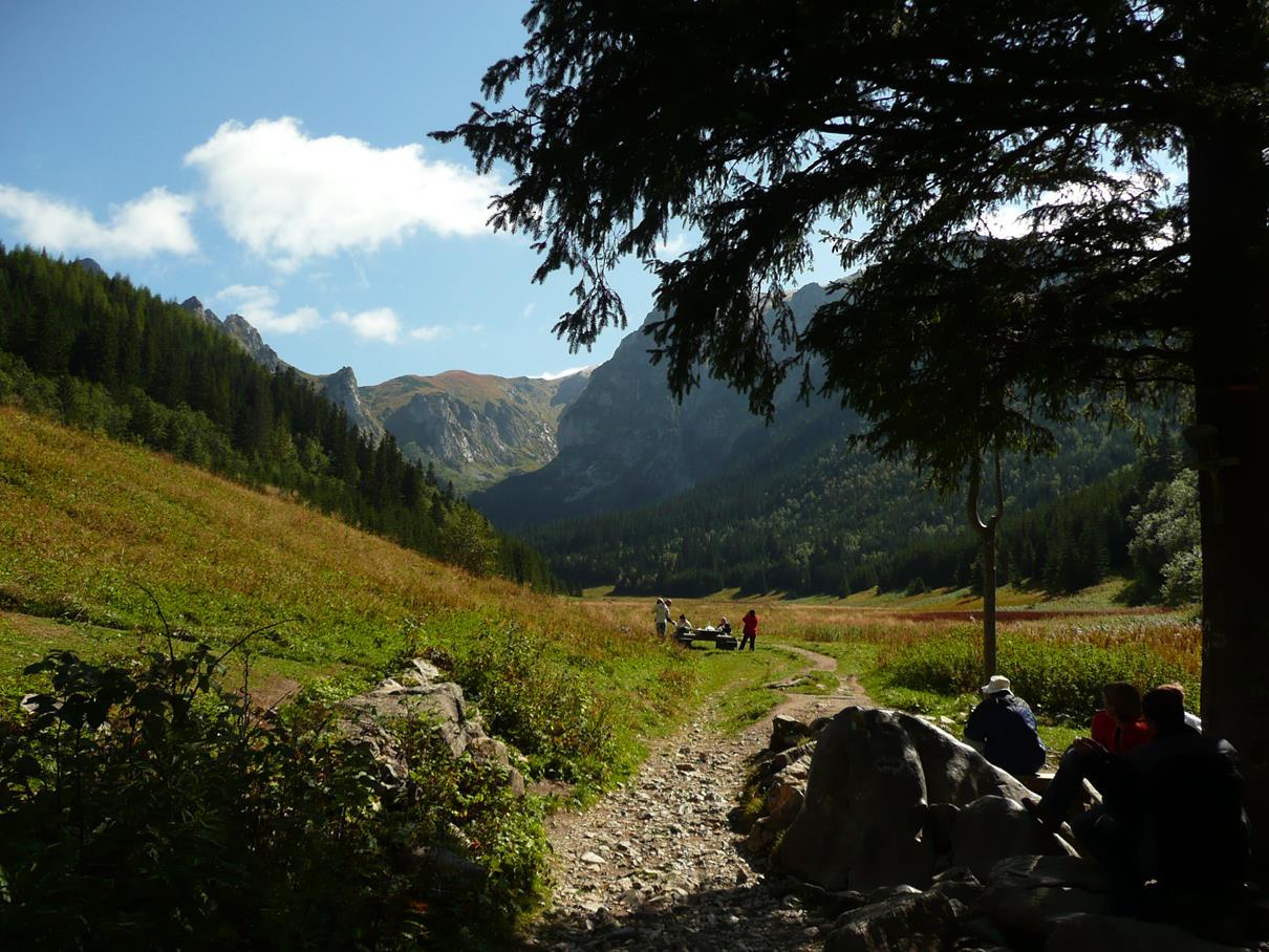 Wielka Polana, skrzyżowanie szlaków
