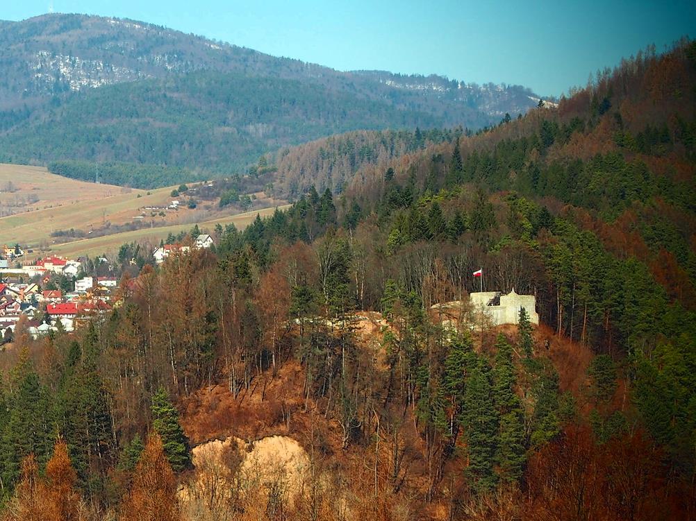 Ruiny zamku - w tle Jaworzyna Krynicka