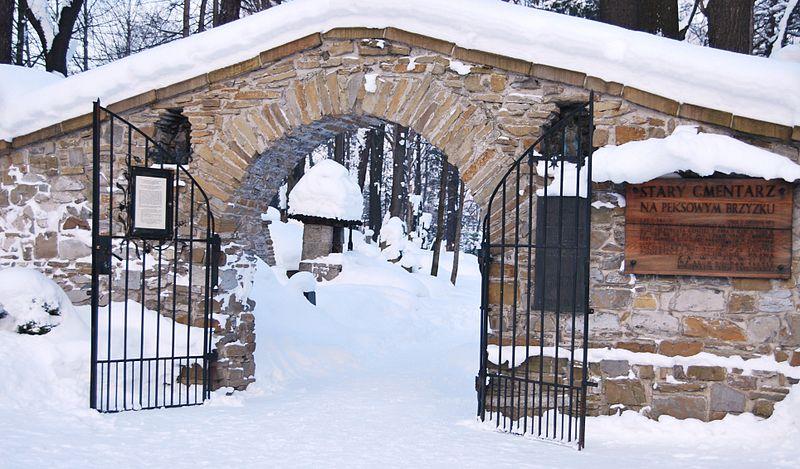 Brama zaprojektowana przez St. Witkiewicza