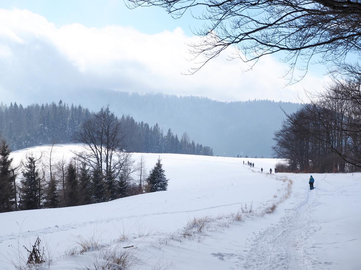 Szlak przez Długie Młaki jest oblegany nawet zimą - wszystko przez wspaniałe widoki.