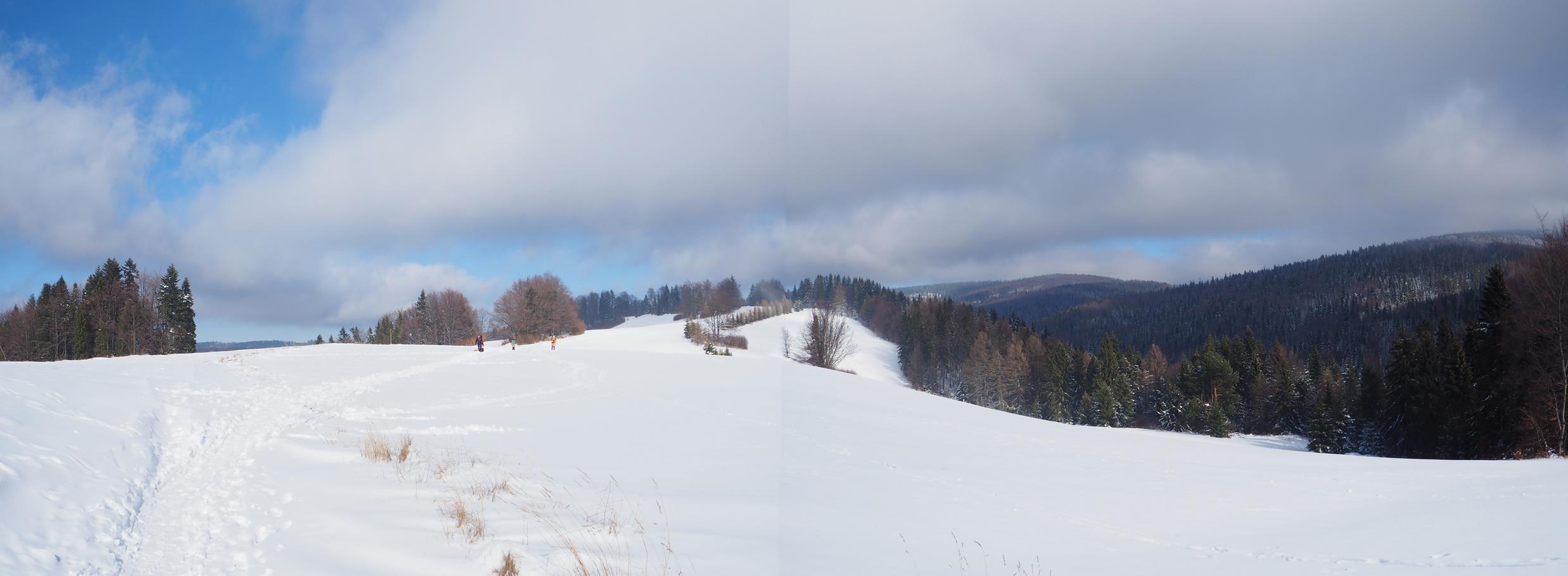 Długie Młaki zimą - raj dla narciarzy biegowych.