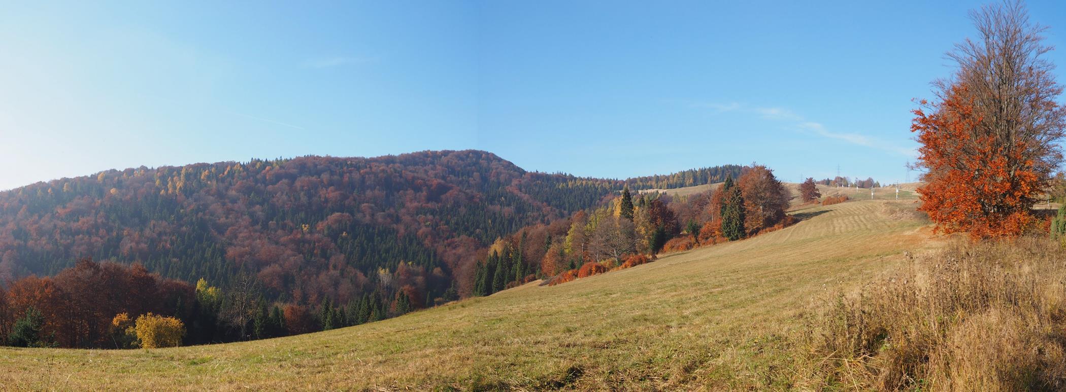 Po wyjściu z lasu odsłania się widok na cel naszej wycieczki - Pustą Wielką i Jaworzynkę (niższy szczyt po prawej).