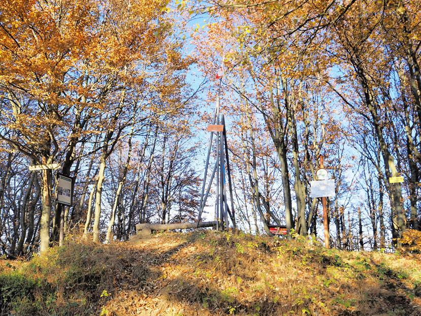 Szczyt Pustej Wielkiej - niestety zarósł, a dawniej był to jeden z najpiękniejszych punktów widokowych w okolicy.