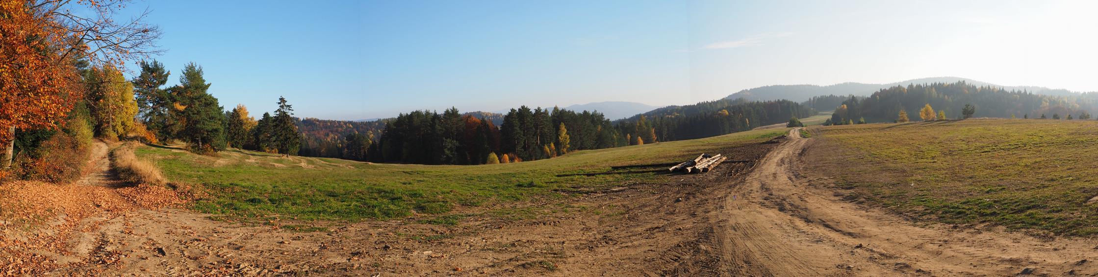 Łąka pod Trzema Kopcami - szlak niebieski prowadzi środkiem łąki, biało-czerwony drogą po lewej.