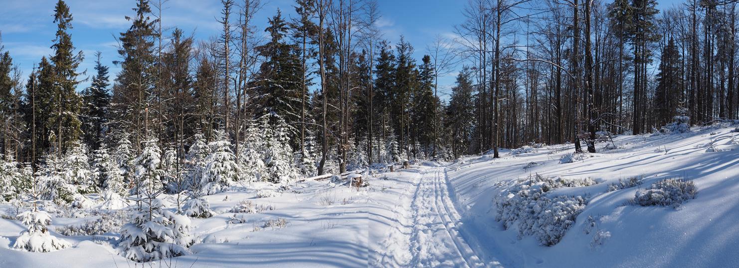 Na zjeździe z Runku było sporo śniegu, ale i tak kamienie wystawały.