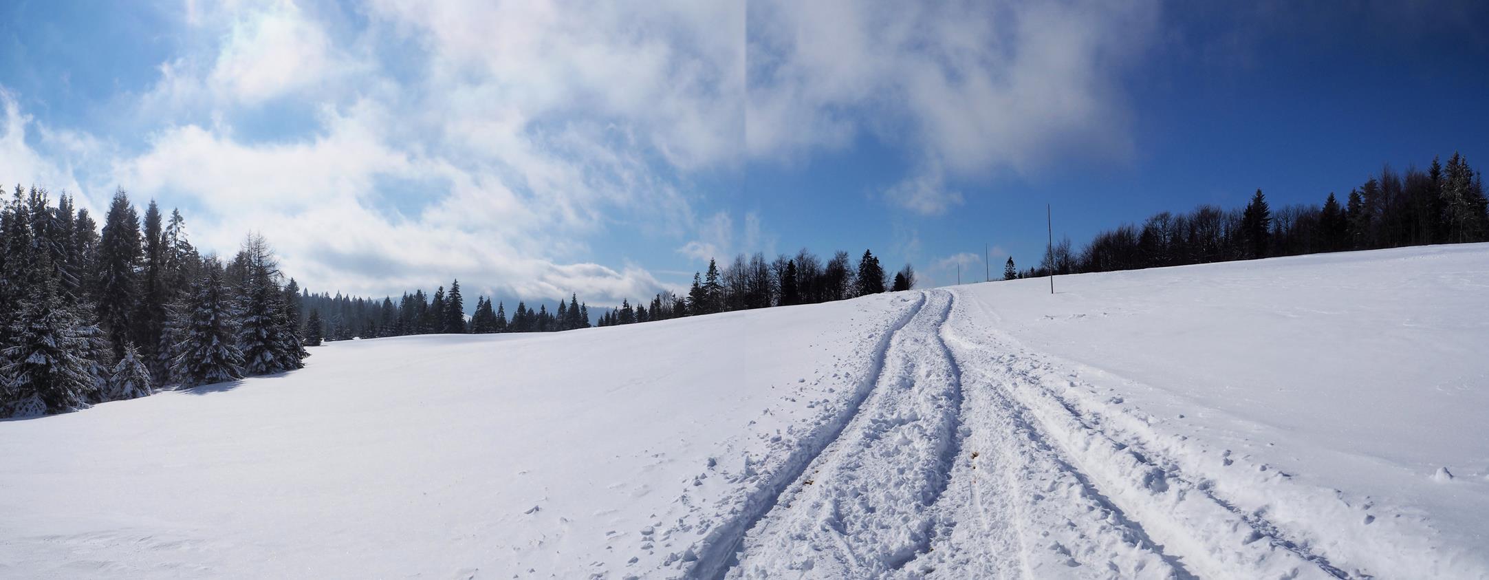Przejazd przez Baranówkę - nawet tyczki z oznaczeniami postawili, a tu śniegu 20 cm...