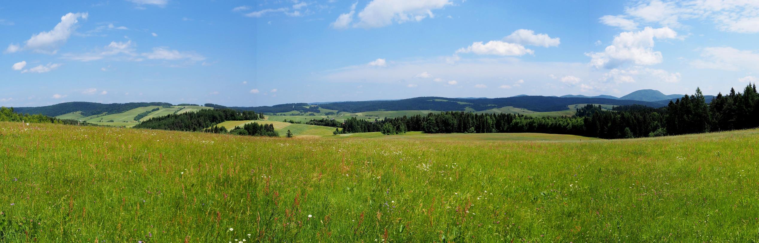Typowy dla Beskidu Niskiego pejzaż - na pierwszym planie łąki wokół Mochnaczki, w tle górująca nad okolicą Lackowa - najwyższy szczyt tego B. Niskiego.