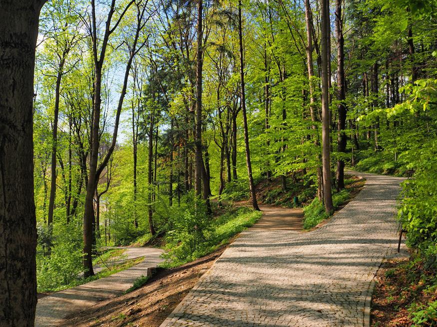 Park Zdrojowy wiosną.
