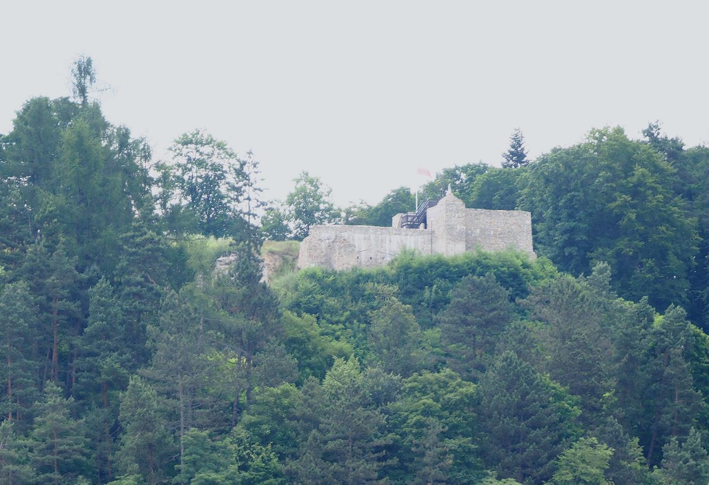 Widok na ruiny i wzgórze Baszta od strony Muszyny.