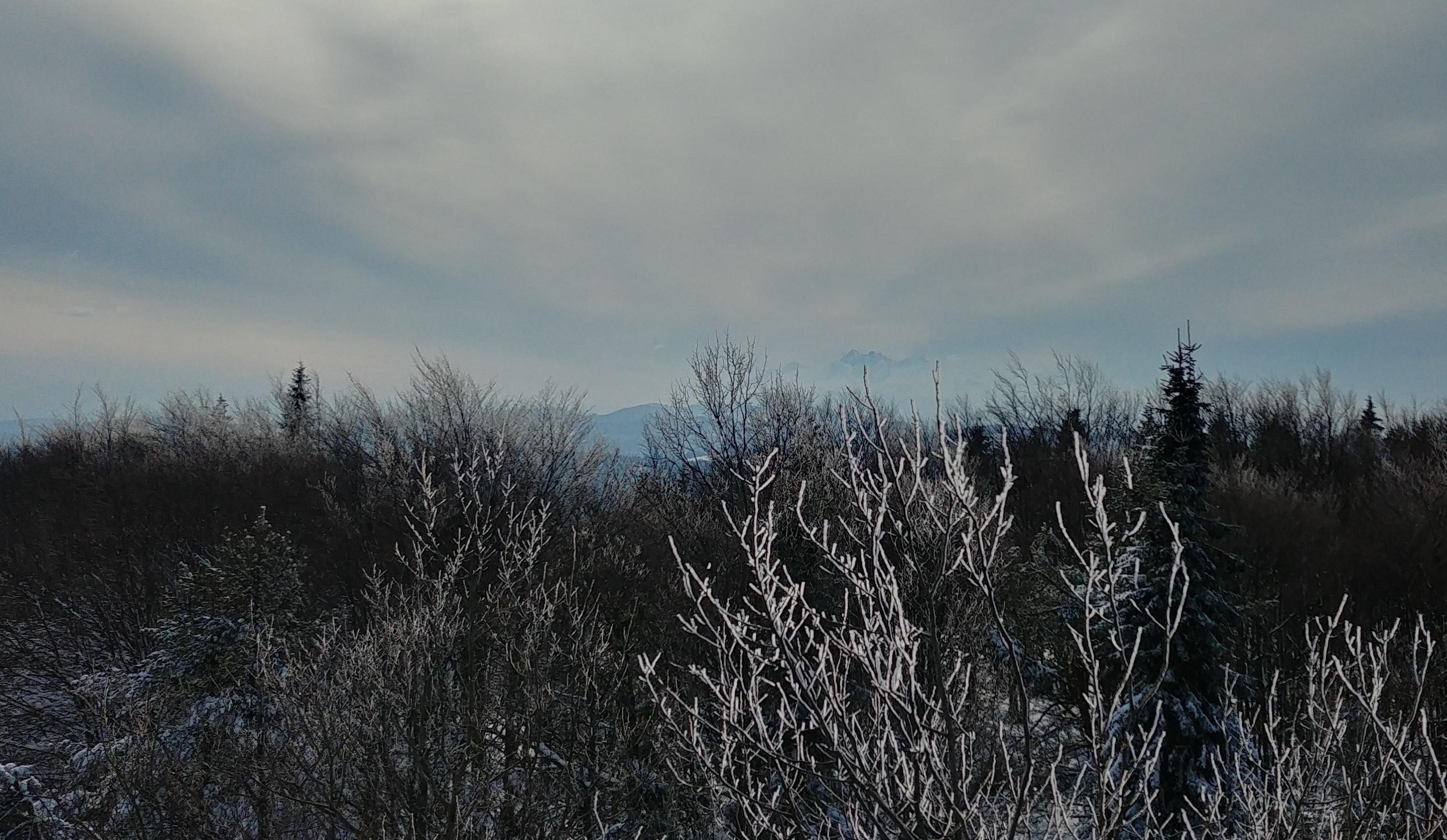 Widok z Eliaszówki w kierunku zachodnim - w oddali zarysowują się Tatry