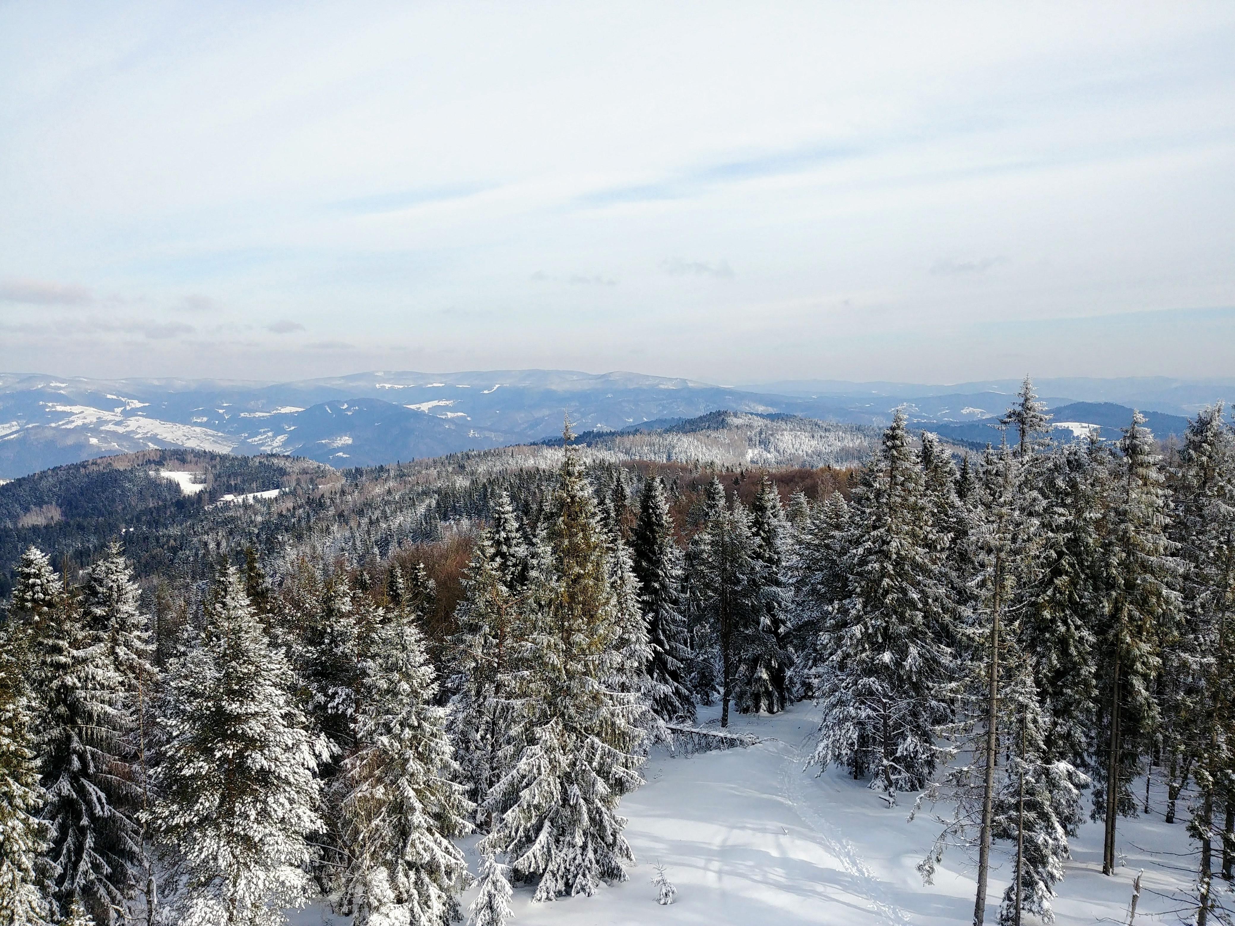 Widok z wieży widokowej na Eliaszówce wynagradza wszelkie trudy :)