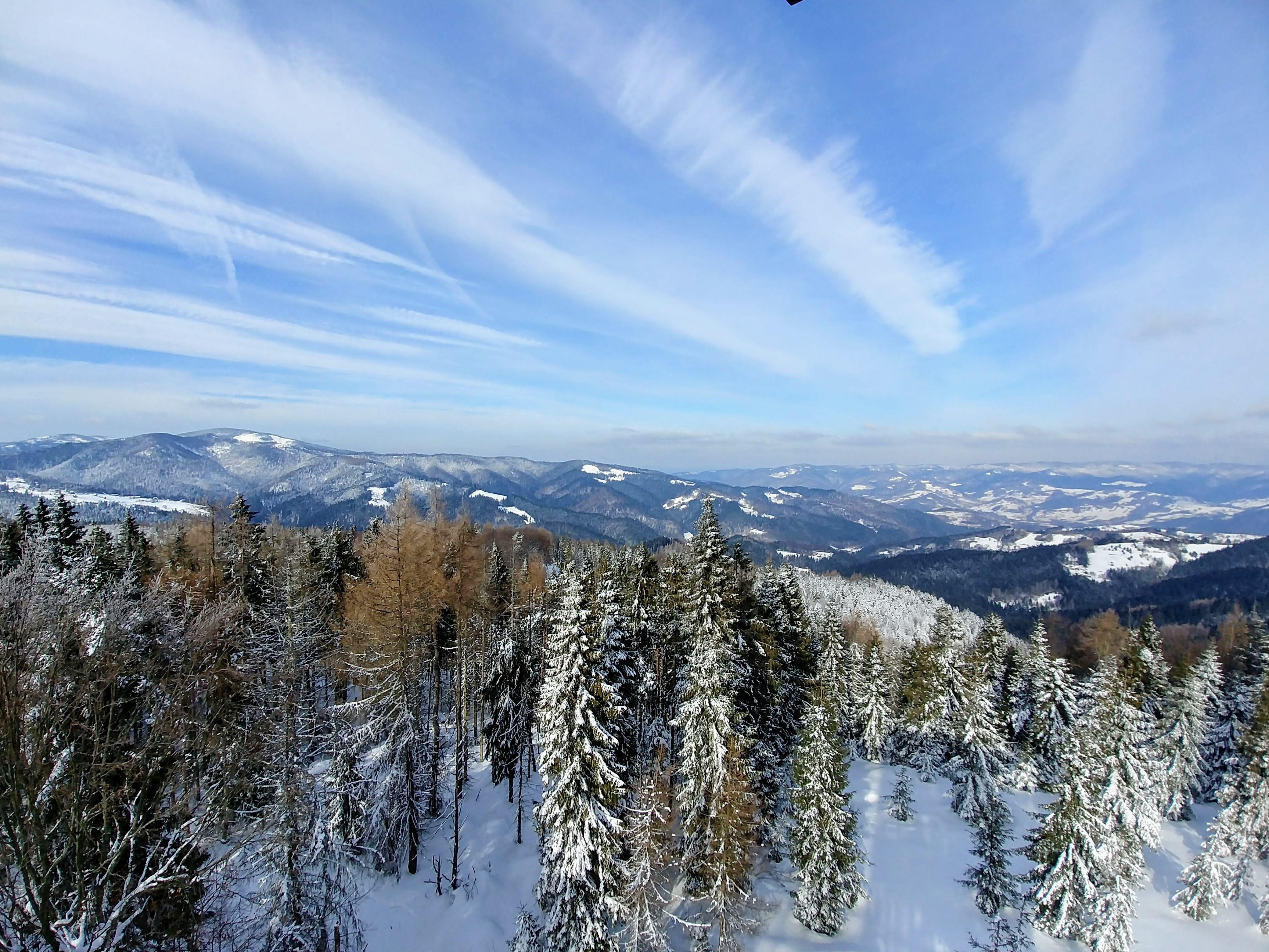 Eliaszówka - widok na pasmo Radziejowej (po lewej) i pasmo Jaworzyny Krynickiej (po prawej w oddali), między nimi rozciąga się Dolina Popradu