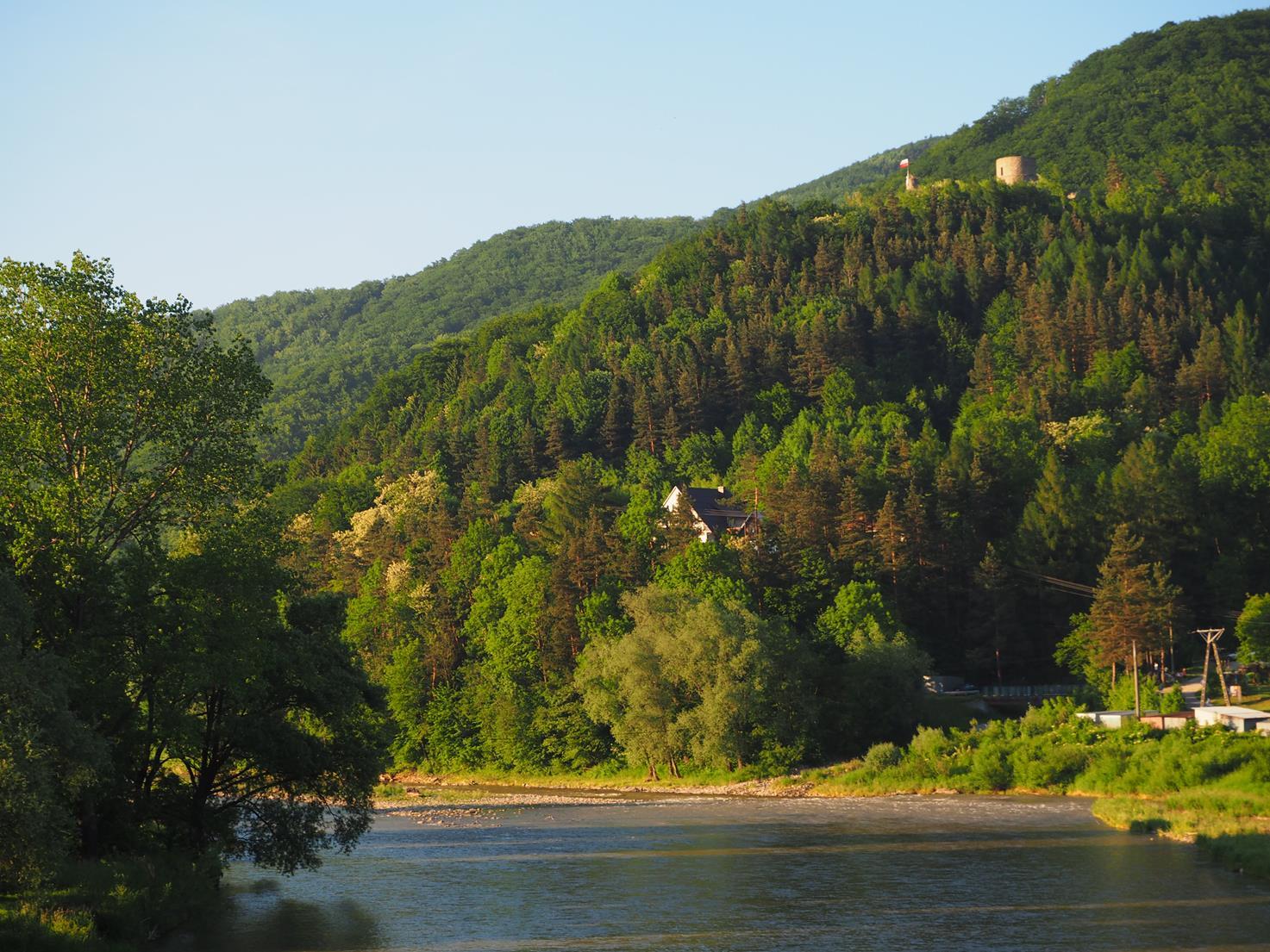 Ruiny zamku ryterskiego wznoszą się na stromym wzgórzu nad Popradem
