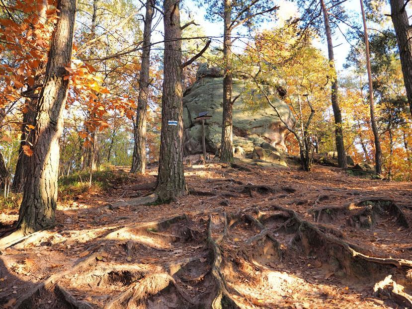 Strome podejście pod Basztę Paderewskiego